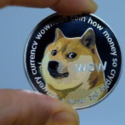Dogecoin club  Clubhouse
