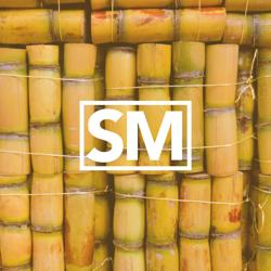 Sugarcane Magazine  Clubhouse
