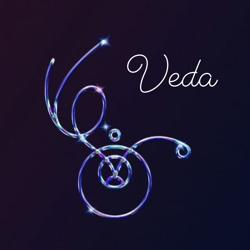 VEDA Clubhouse