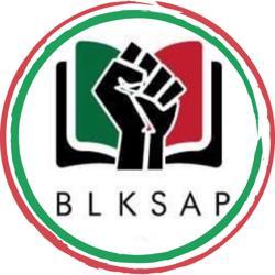 BLKSAP (Black Student Affairs Professionals) Clubhouse