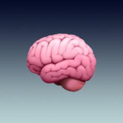 Pragmatic Neuroscience Clubhouse