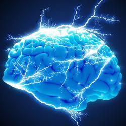Positive Neuroscience Clubhouse