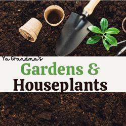 Ya Grandma's Garden & Houseplants  Clubhouse