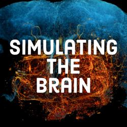 Simulating the Brain Clubhouse